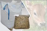Kalvefoder