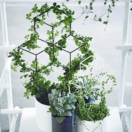 Menu POV Planter Black