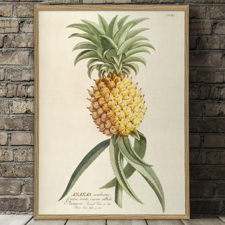 The Dybdahl Co. Ananas Plakat