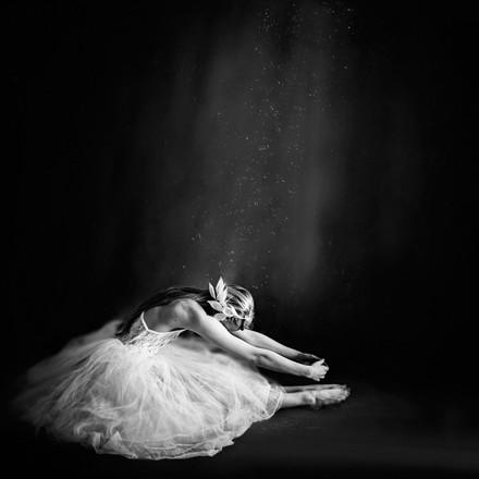 Walnut Street Ballerina IV Plakat