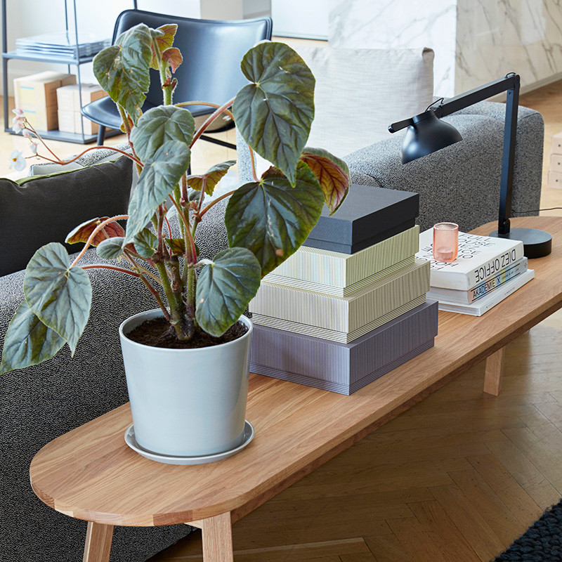 HAY Botanical Family Pot XL Light Grey
