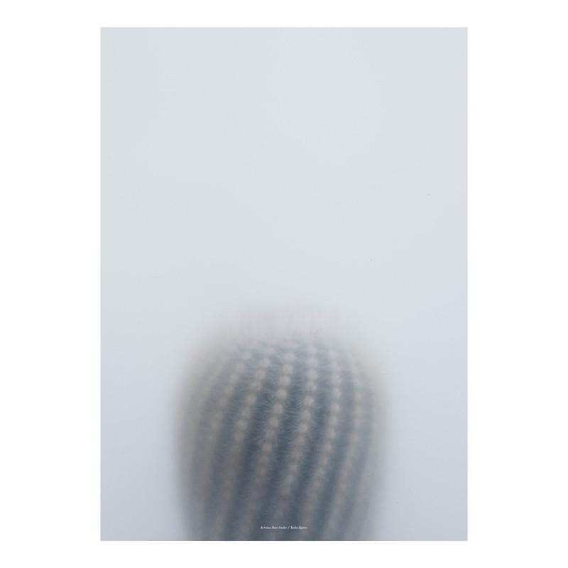 Kristina Dam Ball Cactus I Plakat