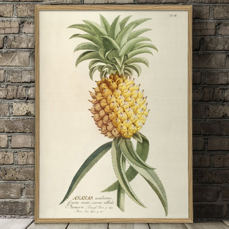 The Dybdahl Co. Ananas Plakat