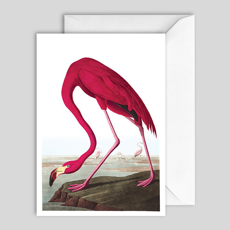 The Dybdahl & Co. Flamingo Greeting Card