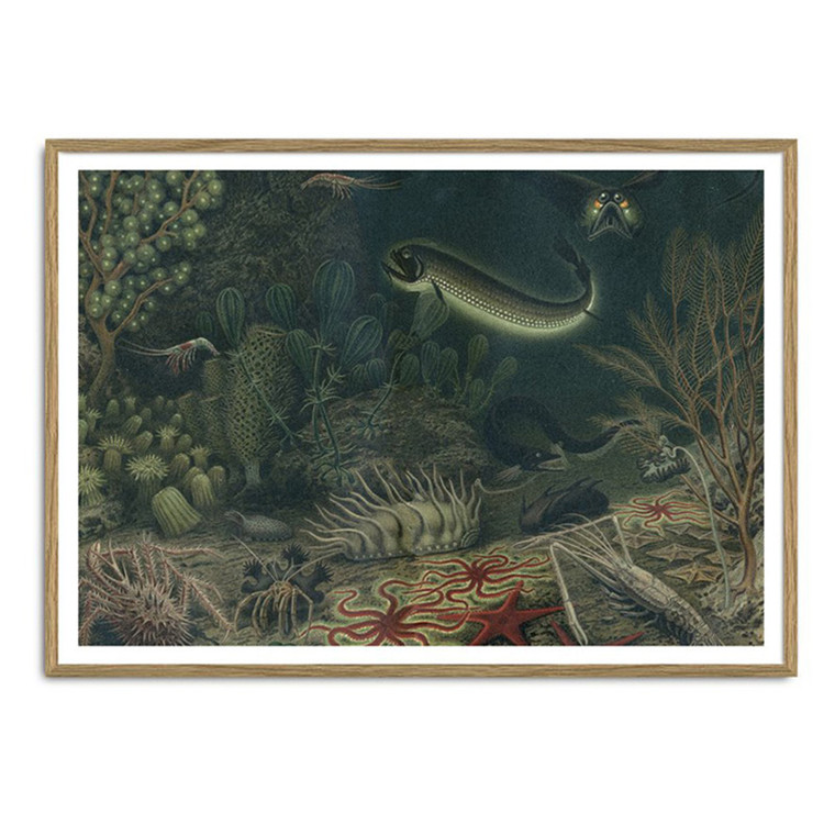 The Dybdahl Co. Deep Sea Fauna Plakat