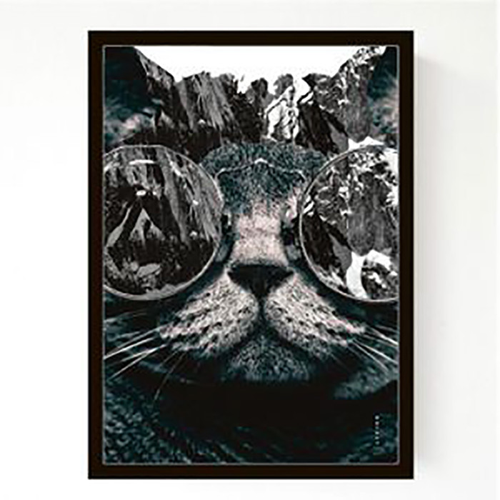 Livink Plakat Photo Cat