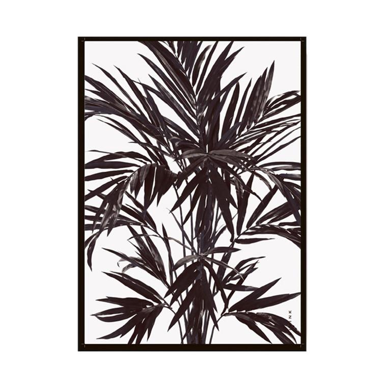 Livink Palmtree Plakat