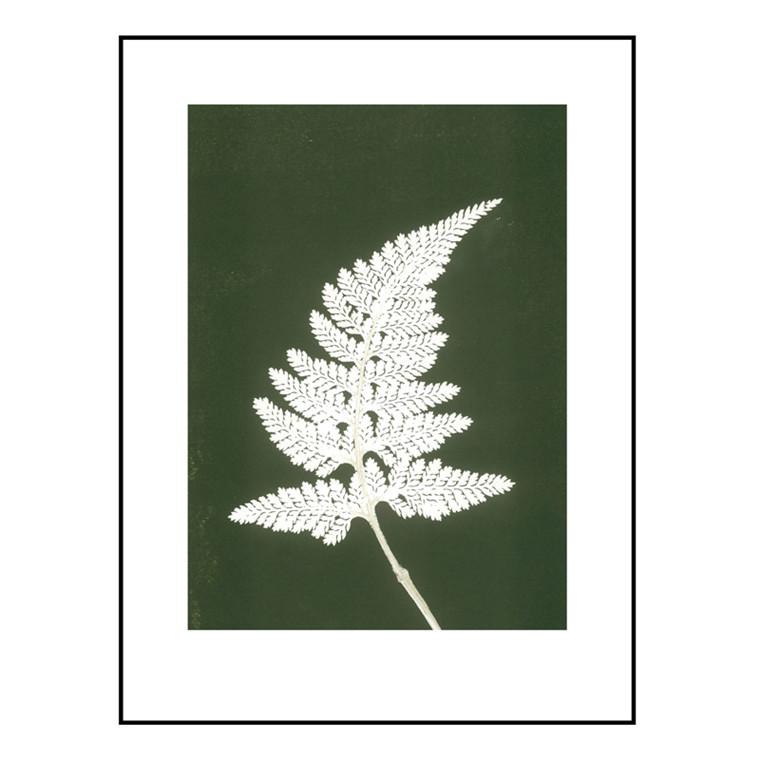 Pernille Folcarelli Fern White/Green Billede