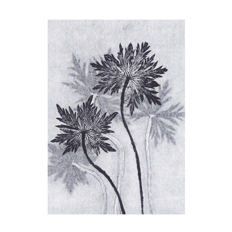 Pernille Folcarelli Geranium 1 Postkort