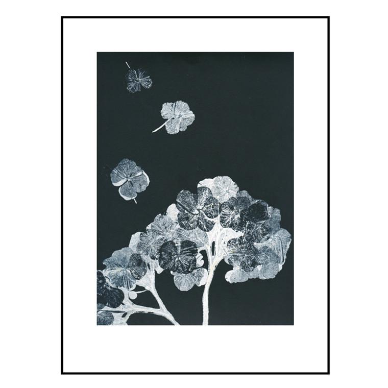 Pernille Folcarelli Hortensia Black Ink Billede