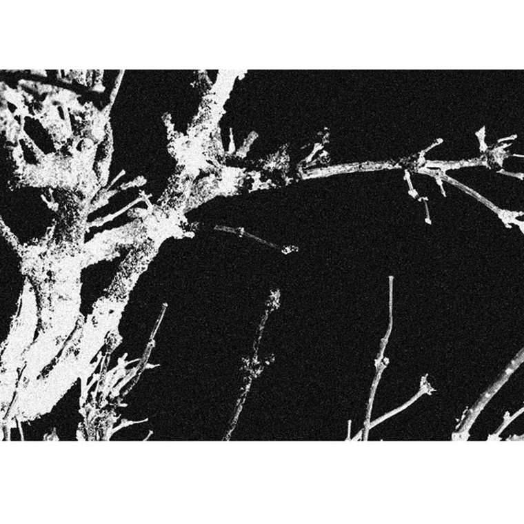 Skriver Collection Trendmat Delux Branches