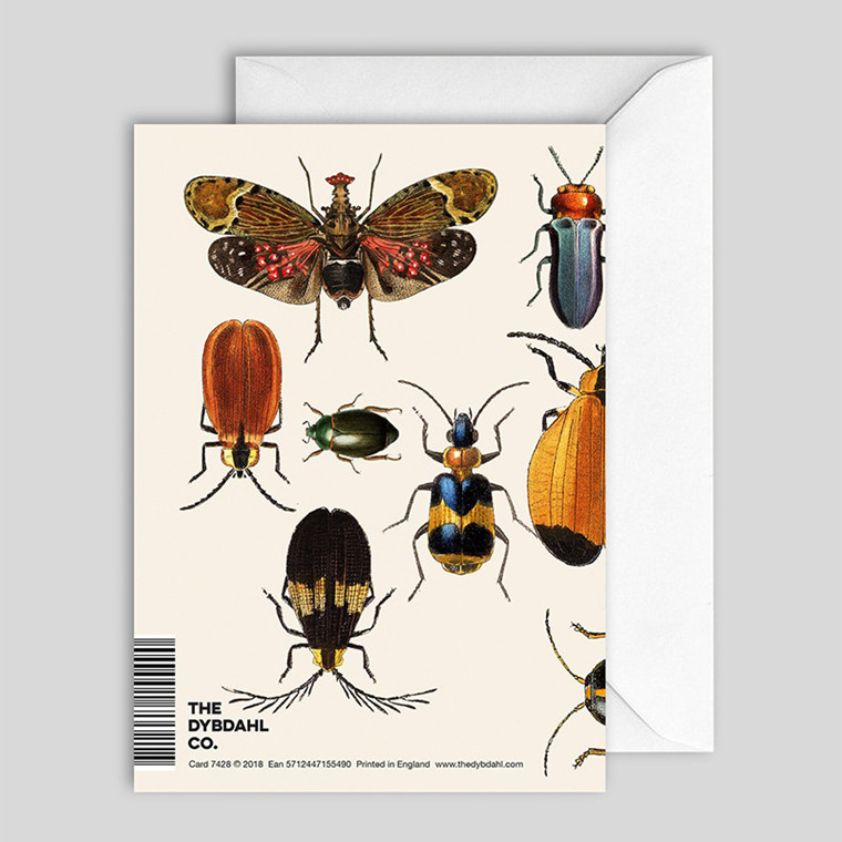 The Dybdahl Co. Insects Greeting Card