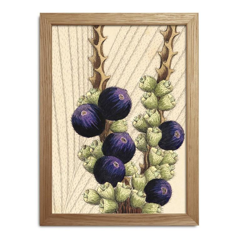 The Dybdahl Co. Plants Mini Print #RC017