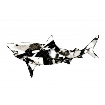 Paradisco Productions Shark Superior Plakat