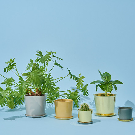 HAY Botanical Family Pot XL Dusty Green