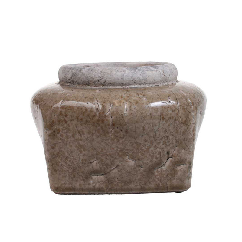 Cozy room mushroom potte
