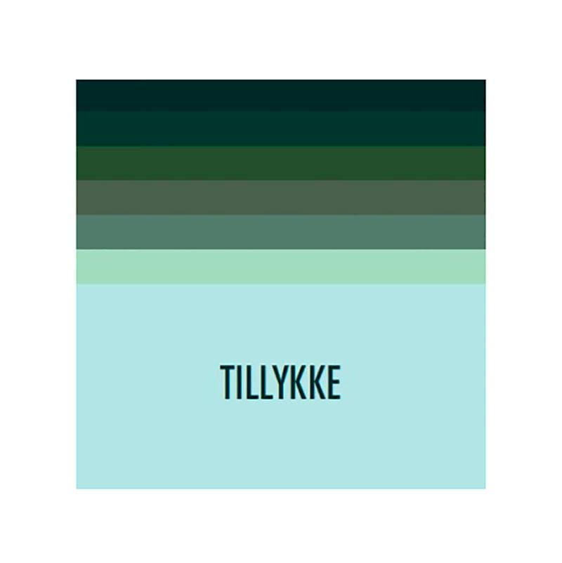 Image of   Kort & Plakat Tillykke Dobbeltkort Grøn