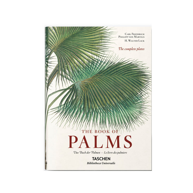 Image of   New Mags The Book of Palms Bog
