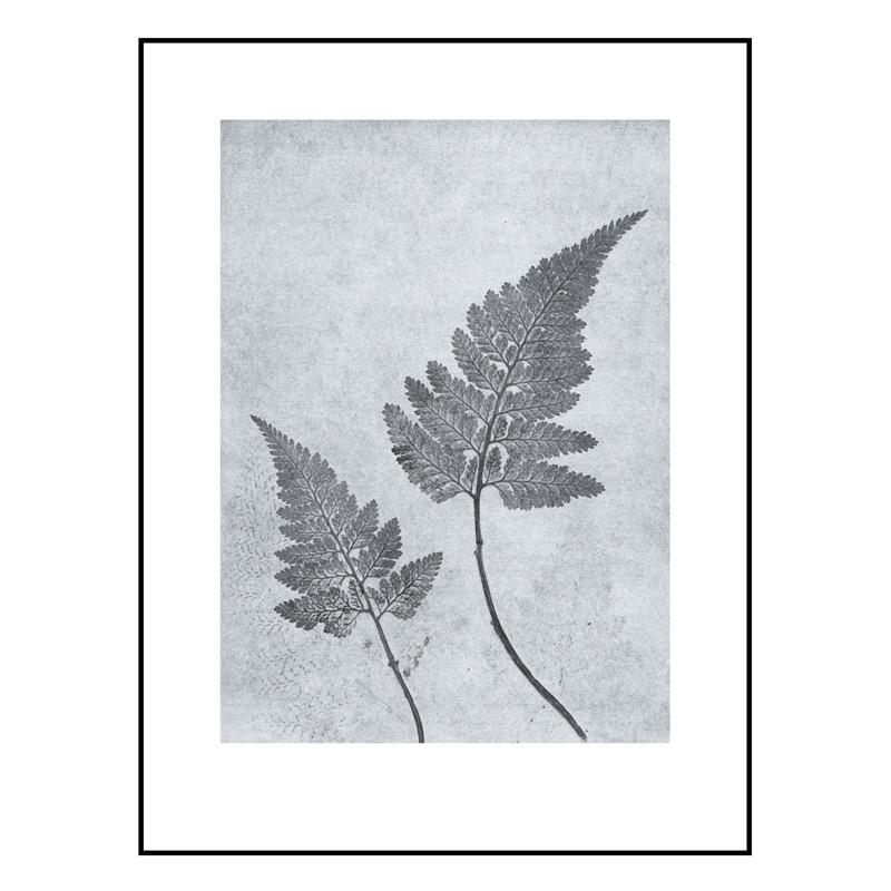 Pernille folcarelli fern dusty blue billede fra Pernille folcarelli fra livingshop