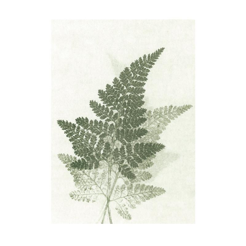Pernille folcarelli Pernille folcarelli fern green green postkort fra livingshop