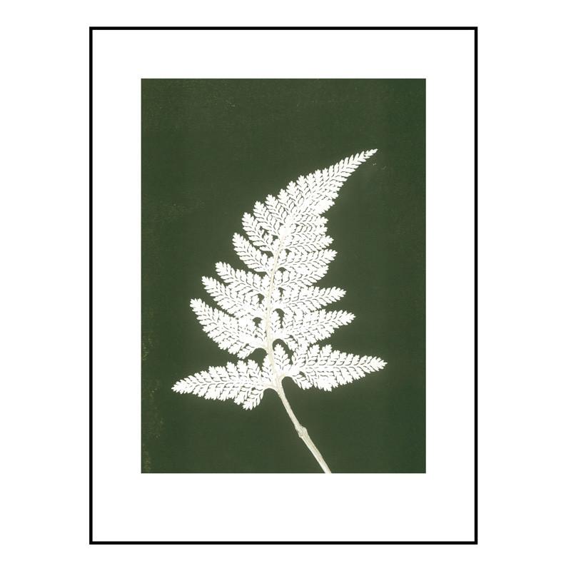 Pernille folcarelli – Pernille folcarelli fern white/green billede fra livingshop