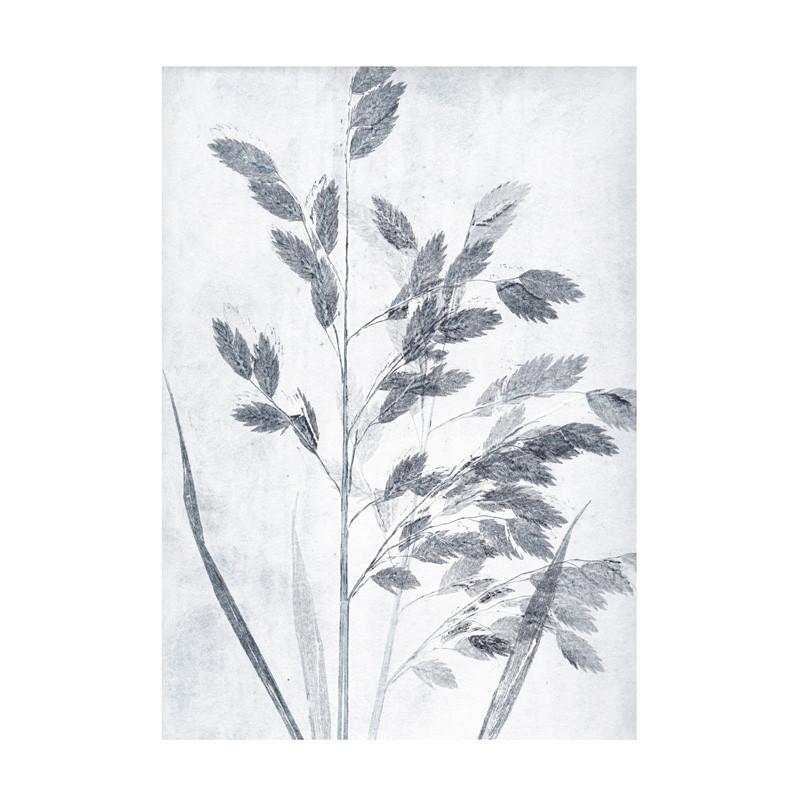 Pernille folcarelli – Pernille folcarelli grass dusty blue postkort fra livingshop