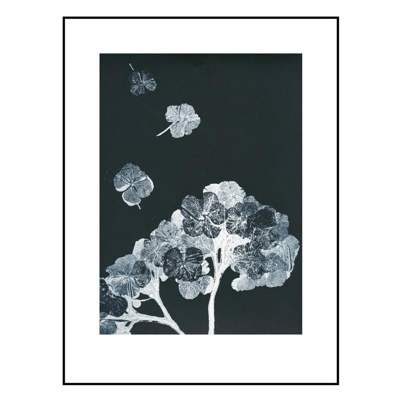 Pernille folcarelli hortensia black ink billede fra Pernille folcarelli fra livingshop