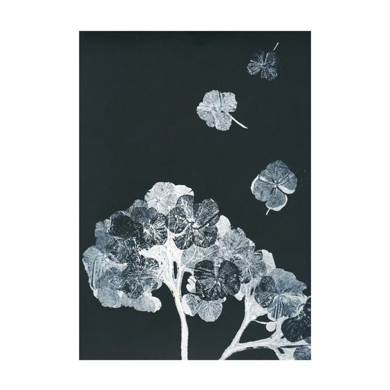Pernille folcarelli – Pernille folcarelli hortensia black ink postkort fra livingshop