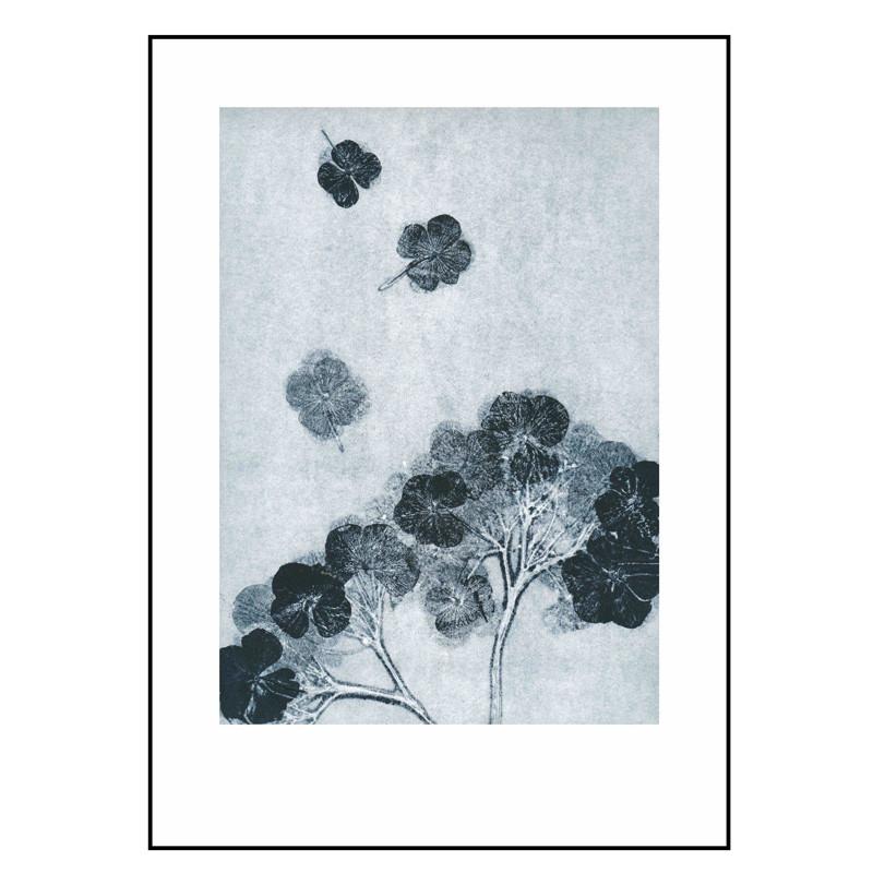 Pernille folcarelli hortensia ink billede fra Pernille folcarelli fra livingshop
