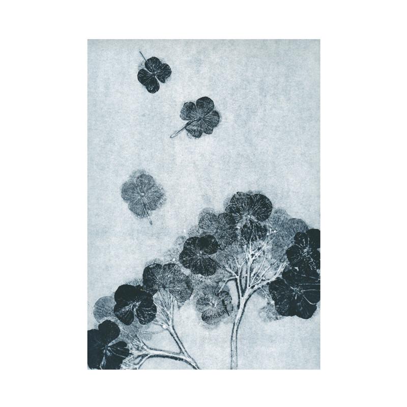 Pernille folcarelli hortensia ink postkort fra Pernille folcarelli fra livingshop