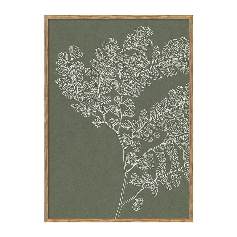 The dybdahl co. ferns #7215 plakat
