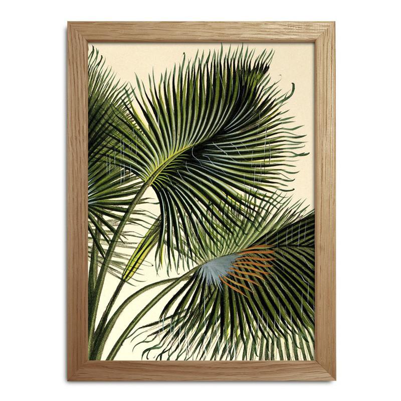The dybdahl co. plants mini print #rc020 fra The dybdahl co. på livingshop