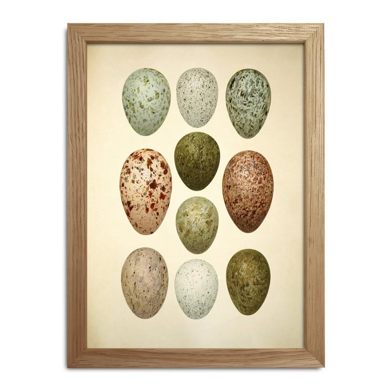 The dybdahl co. eggs & birds mini print fra The dybdahl co. på livingshop