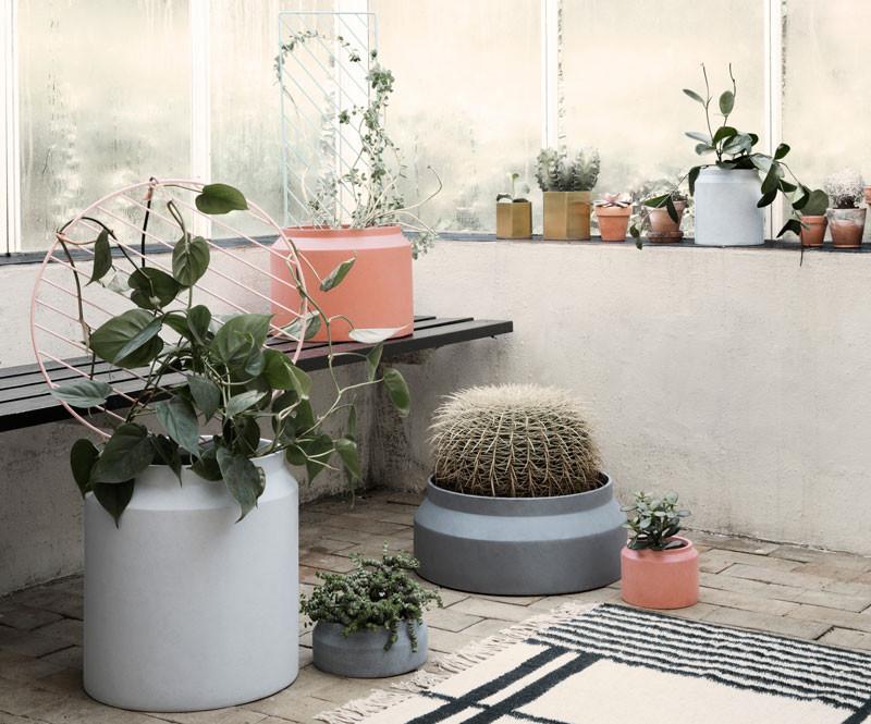Naturlig boligindretning » Indretning med planter og træ ...