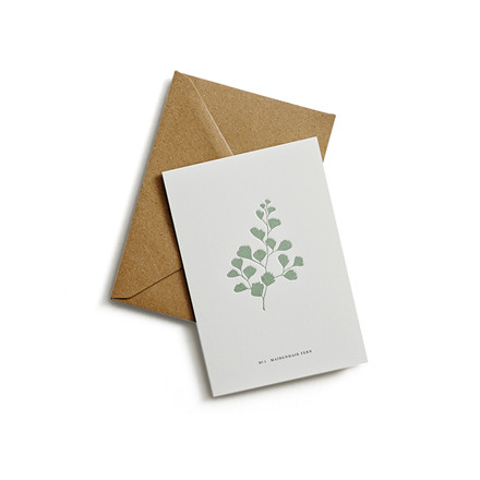 Kartotek Postkort Fern