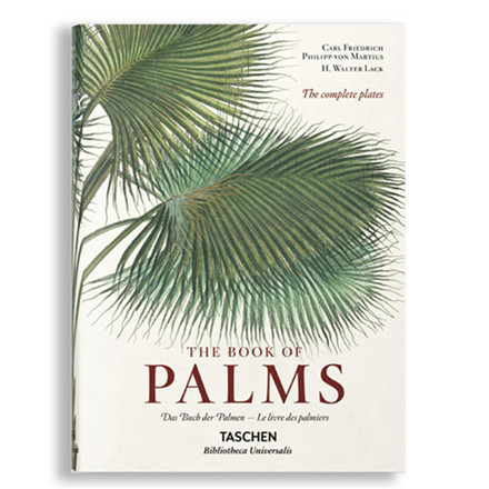 New Mags The Book of Palms