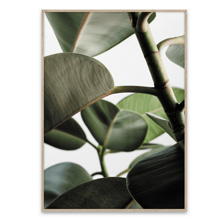 Paper Collective Green Home 03 30x40