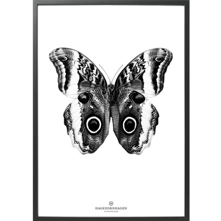 Hagedornhagen Plakat Sommerfugl BW3