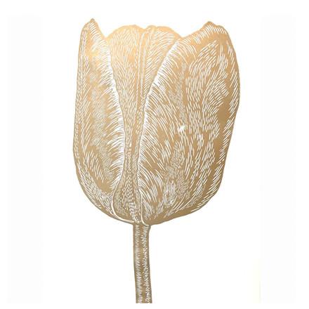 Monika Petersen Kunsttryk Tulipan Guld-Hvid 50x70