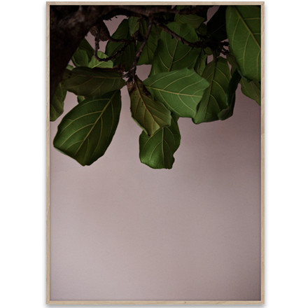 Paper Collective Plakat Green Leaves 30x40