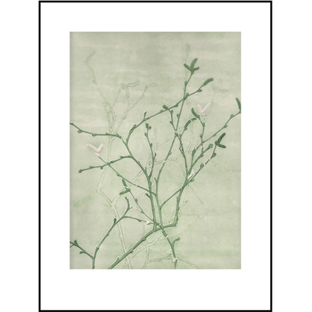 Pernille Folcarelli Illustration Birch Green 30x40