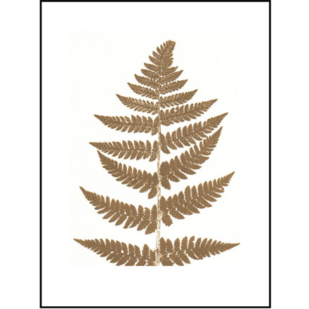 Pernille Folcarelli Illustration Fern Gold 30x40