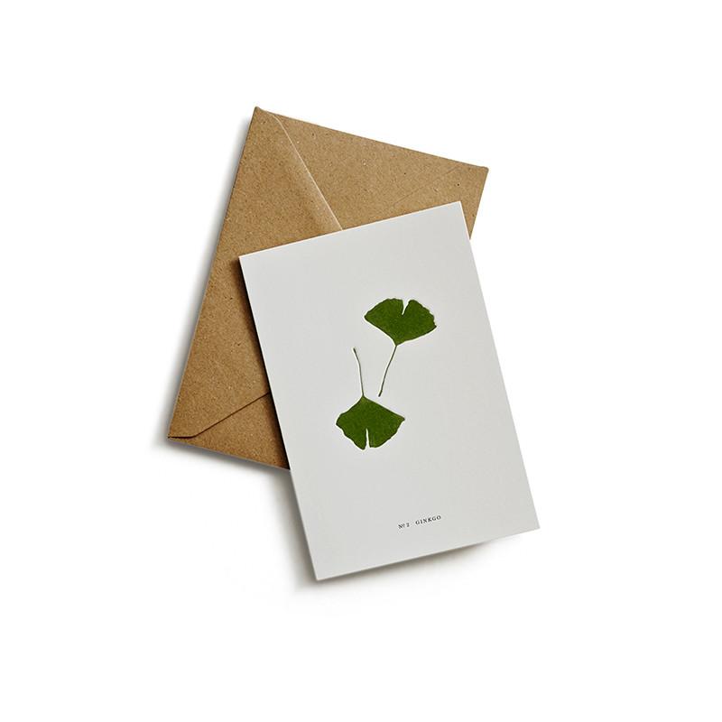 Kartotek Postkort Ginkgo