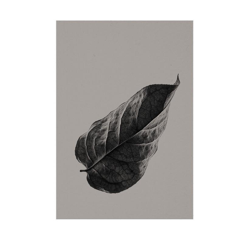 Paper Collective Plakat Sabi Leaf 01