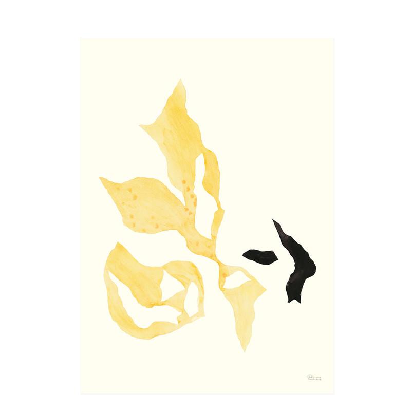 Hein Studio Plakat Shadow collection no. 02