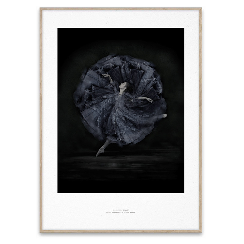 Paper Collective Plakat Essence Of Ballet 06
