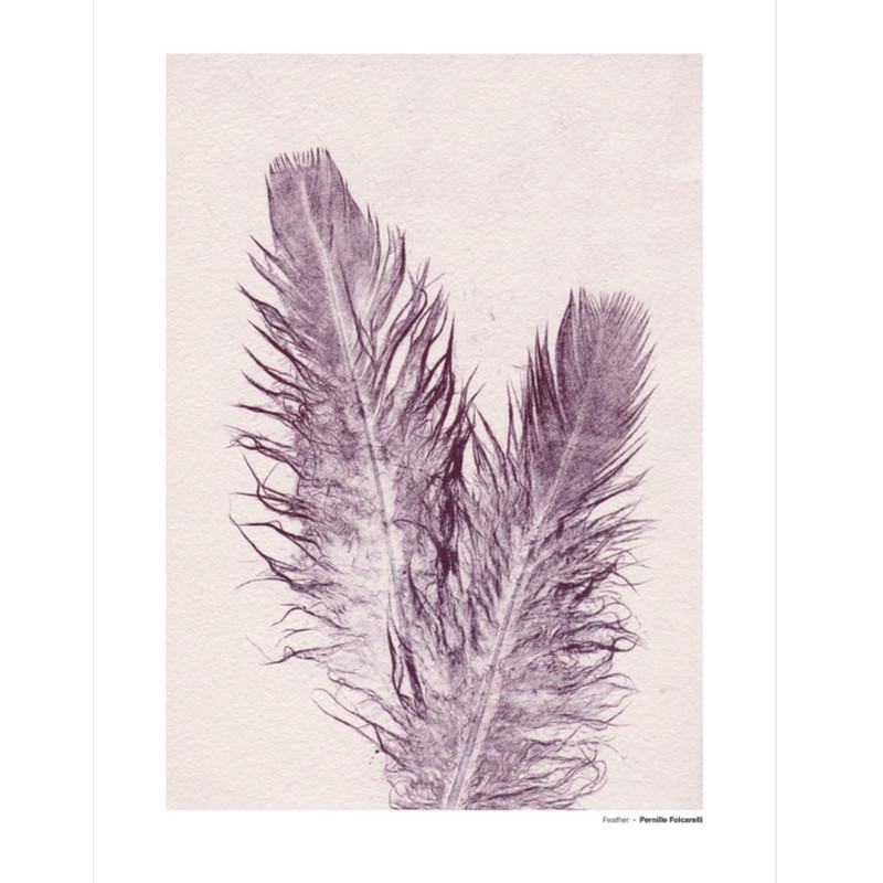 Pernille Folcarelli Feather 4 Illustration m. Ramme