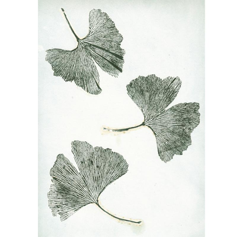 Pernille Folcarelli Postkort Gingko Green