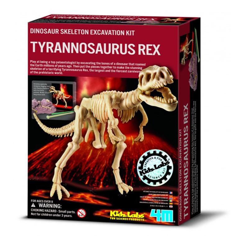 4M KidzLabs, Tyrannosaurus Rex skelet