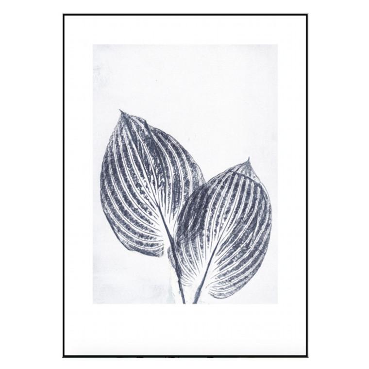 Pernille Folcarelli Plakat Hosta Blue 50x70